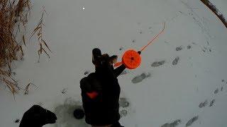Зимняя рыбалка в йошкар-оле