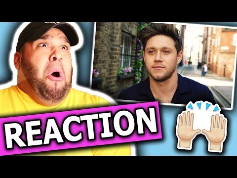 Niall Horan - Nice To Meet Ya (Music Video) REACTION