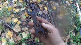Удивительные находки  в лесу. По следам лесорубов.