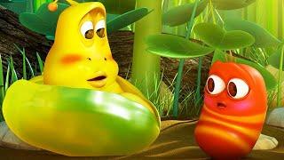 LARVA   LES BÉBÉS LARVES   Dessins animés pour enfants   WildBrain