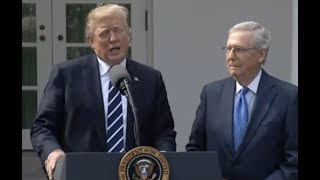 Trump And McConnell News Conference-Full Event