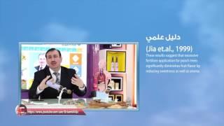 Doctor Jameel Alqudsi Dweik 04/25/2017