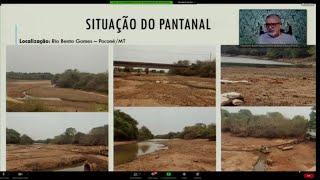 Queimadas - Os impactos da crise hídrica na região pantaneira - None