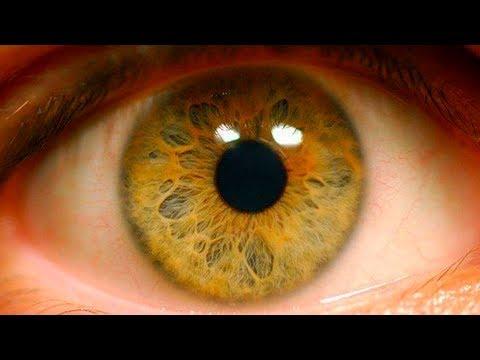 Тифлотехнические средства коррекции зрения