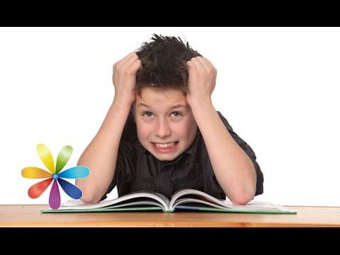 Как развить стрессоустойчивость у ребенка? - Все буде добре - 17.12.14 - Все будет хорошо