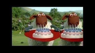 Shaun the Sheep | BEST FUNNY PLAYLIST (PART 11 ) | فيلم كرتون الخروف الشهير شون ذا شيب
