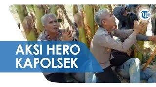 Viral Video Aksi Kapolsek Bersimpuh Memohon kepada Massa yang Mengamuk