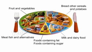 Components of Foods | 6th Std CBSE Science syllabus