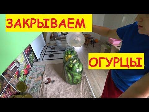 ЗАКРЫВАЕМ ОГУРЦЫ / ПРОСТОЙ РЕЦЕПТ / Закрутки на зиму / Семья в деревне