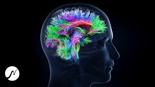 Activate 100% Brain Potential - Genius Brain Frequency - Beta Waves (Brainwaves)
