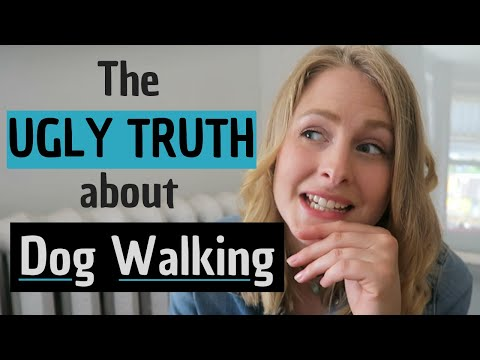 What Nobody Tells You About Dog Walking | InRuffCompany.com