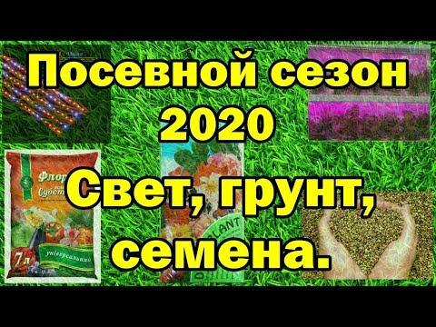 🌼🌱Посевной сезон 2020. Свет, грунт, семена.