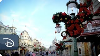 What Does Walt Disney World Look Like During The Holidays?