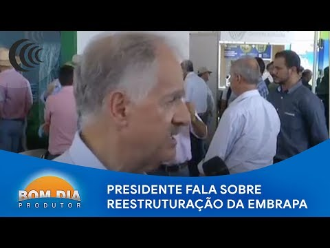 Presidente da Embrapa fala sobre reestruturação da empresa