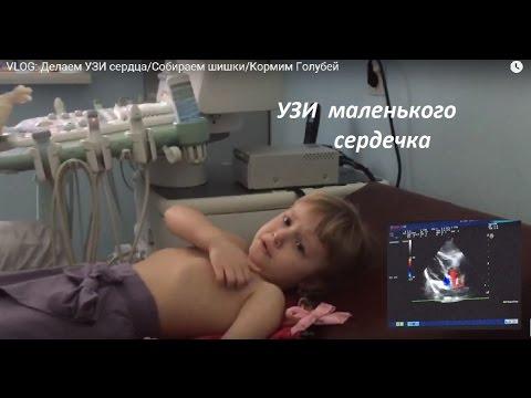 VLOG: Идем к врачу/Делаем УЗИ сердца/We go to the doctor / Make a heart ultrasound