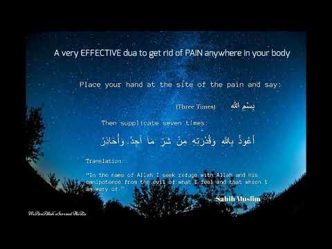 Dua For Pain But Mostly Stomach pain - смотреть онлайн на Hah Life