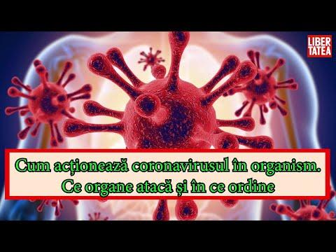 Tablete pentru eliminarea paraziților din organism