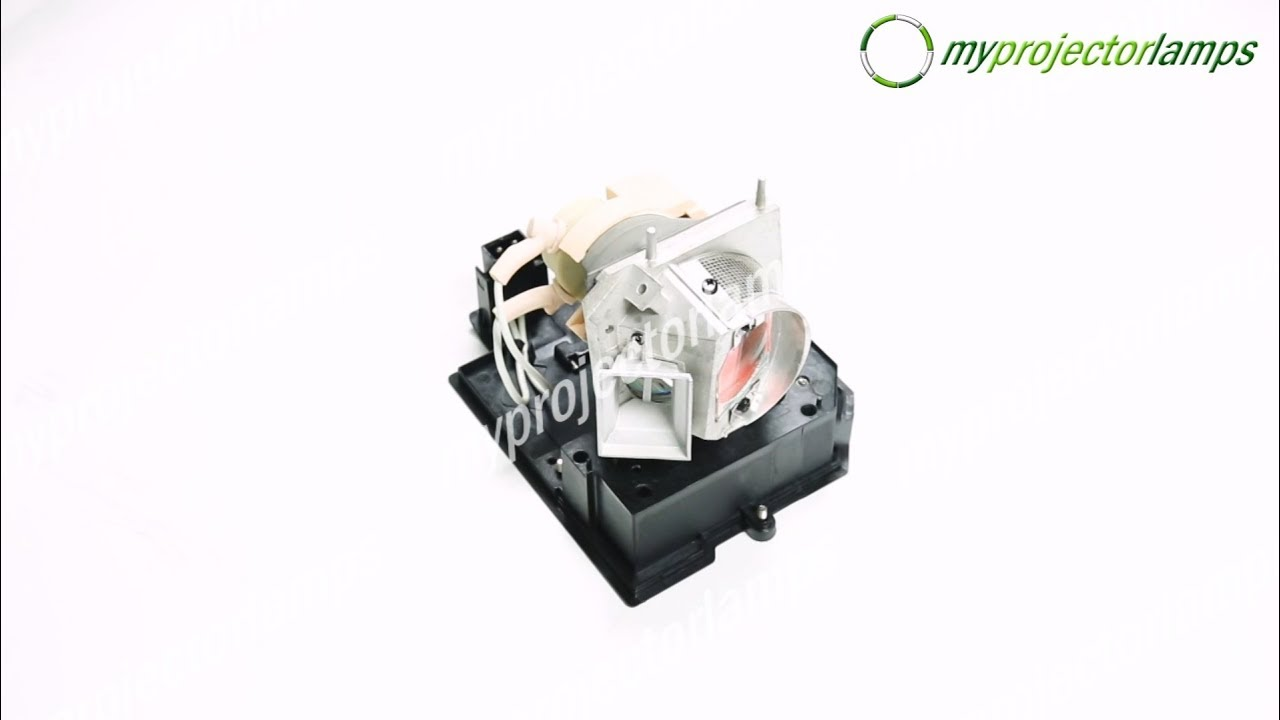 Acer EC.J8700.001 Projector Lamp with Module