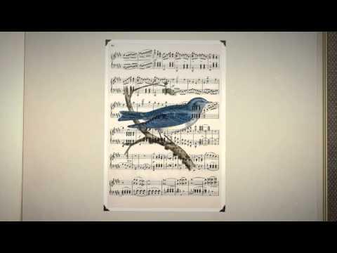 Винтажные красивые птицы. Коллекция картинок