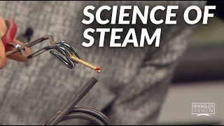 Science of Steam on 9NEWS