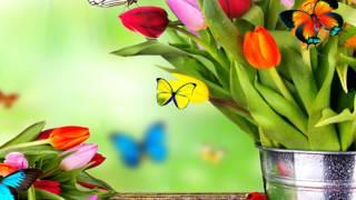 Красивые букеты цветов Фото \Beautiful flowers Photo