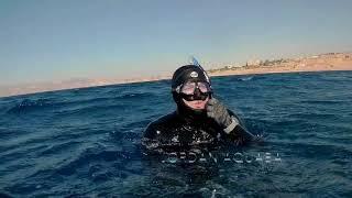 preview picture of video 'Cedar Pride Wreck Jordan Aquaba FreeDiving'