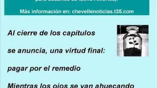 """Chevelle """"Feel into your Shoes"""" (Traducción en español) .wmv"""