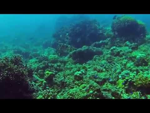 Turtle Island + Juliens Wrack, Turtle Island (+ Juliens Wrack),Sipalay,Philippinen
