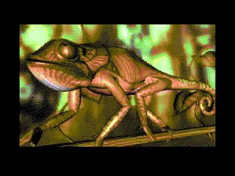Commodore C64 Video Player - Chameleon