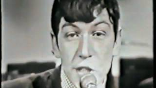 The Animals - Gon na Send You Back To Walk er