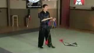 Отрывок из учебного видео про Шуан Цзю Цзе Бянь.flv