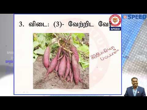 NEET UG 2018 Answer Discussion – Botany (Tamil)