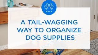 A Tail-Wagging Way To Organize Dog Supplies