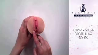 Смотреть онлайн Как делать эротический массаж клитора и вагины