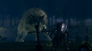 Boss Fight - Great Grey Wolf Sif