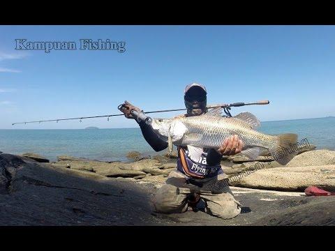 ปรสิตภาพปลาแซลมอน