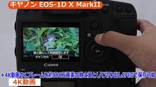 キヤノン デジタル一眼レフカメラ EOS 1D X MarkII (カメラのキタムラ動画_CANON)