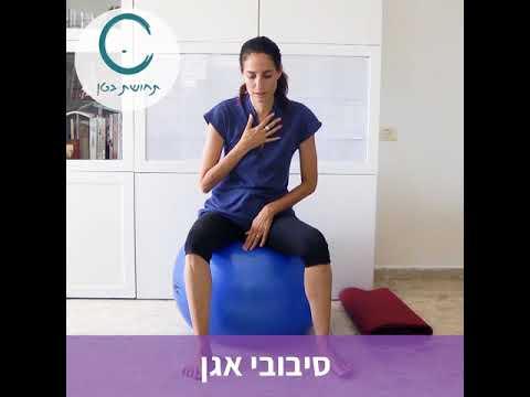 הריון וכאבי גב תחתון- אבישג אורן