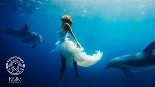Underwater Meditation Music sleep meditation music sleeping meditation relax music 31601U