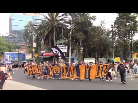 """""""La Rebel, 17 años de locura y de pasión"""" Barra: La Rebel • Club: Pumas"""