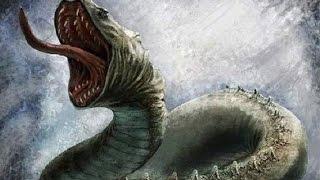Giant snakes mysterious forest protection Phong Nha - Ke Bang