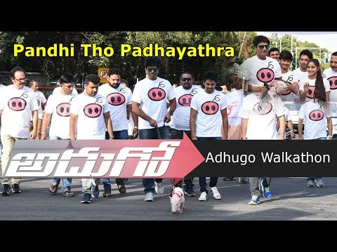 Pandhi Tho Padhayatra Conducted by Adhugo Team