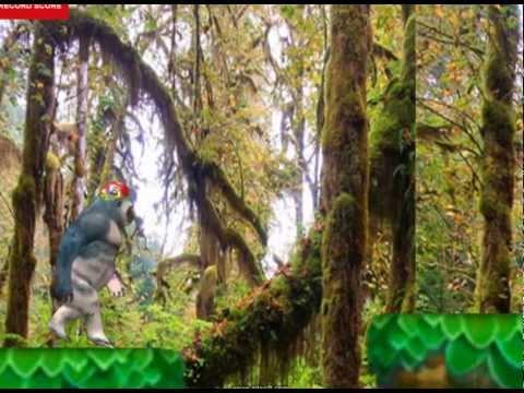 Video of Konge Runner