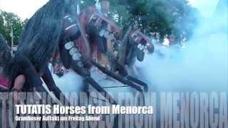 preview picture of video 'Warendorfer Pferdenacht2013 --TUTATIS -- Horses from Menorca'