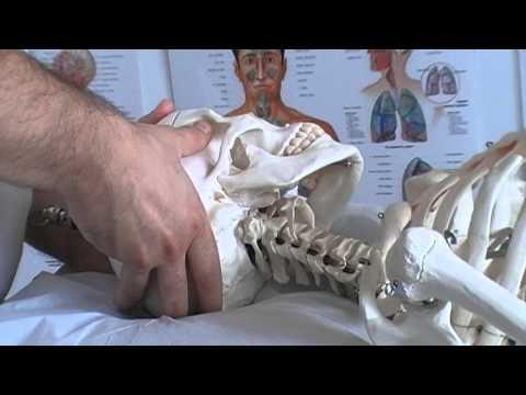 Dolore al gomito osteocondrosi