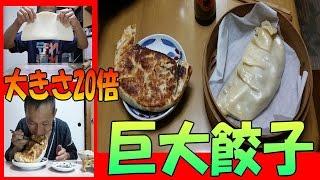 【大きさ 20倍】 巨大餃子 を 作ってみる ( 巨大料理 大食い)