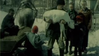 """Documentary """"Road home"""" about some social problems in Russia. Документальный фильм """"Дорога домой""""."""