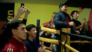 В Шымкенте положили официальное начало боям по правилам MMA