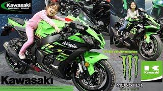 2019 Kawasaki NINJA ZX-6R Walk Around. Ninja 636. 2019 Ninja ZX-10R, Ninja Sportbikes