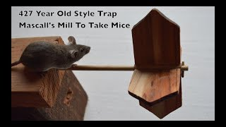 427 Year Old Style Mouse Trap In Action - Mascall's Mill To Take Mice